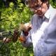 cage-botanischer-garten-3